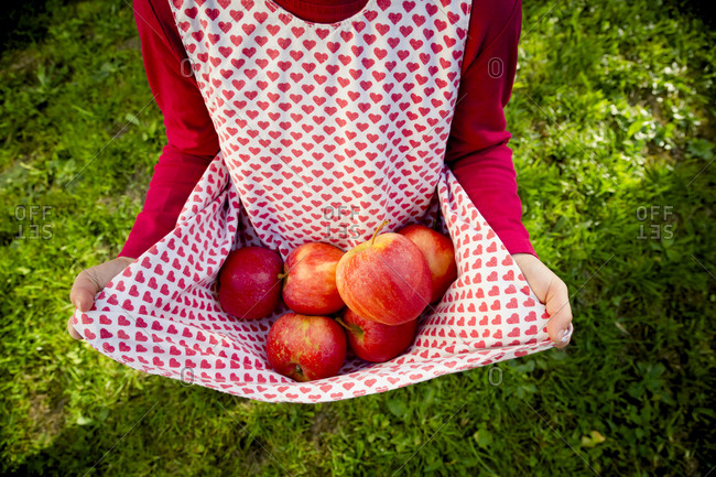 Little girl holding apples with her dress
