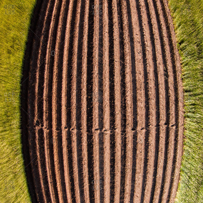 Curved image of Lithuanian farm fields