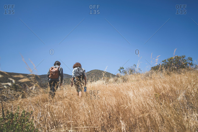 Rear view of young adults hiking together