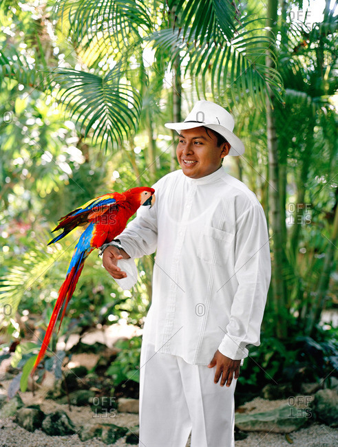Staff member at Mexican luxury resort holds a Macaw parrot before its feeding time