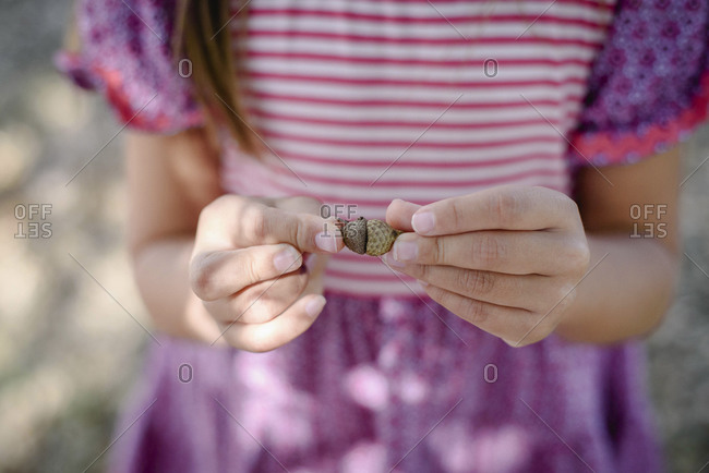 Close up of girl's hands holding small acorns