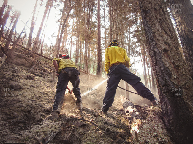 Alberta, British Colombia, Canada - July 6, 2015: Panorama Crew Services members spraying water on hot coals from a forest fire, Alberta, British Colombia, Canada