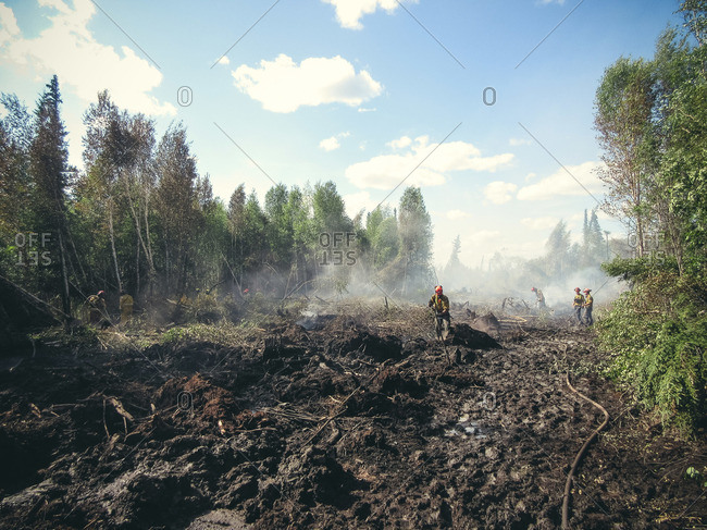 Alberta, British Colombia, Canada - July 13, 2015: Members of Panorama Crew Services cleaning up forest fire remains, Alberta, British Colombia, Canada