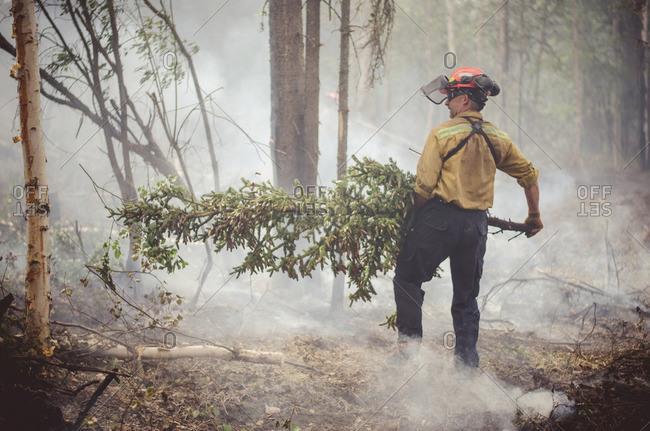 Alberta, British Colombia, Canada - July 16, 2015: Member of Panorama Crew Services carrying tree away from smoke, Alberta, British Colombia, Canada