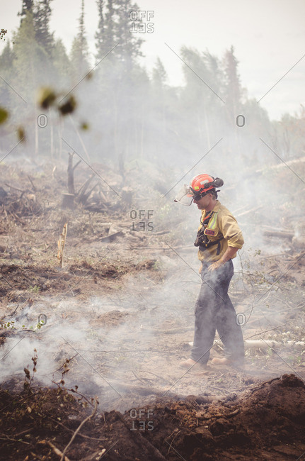 Alberta, British Colombia, Canada - July 16, 2015: Member of Panorama Crew Services walking through burnt down forest, Alberta, British Colombia, Canada