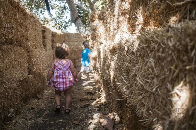 Two young children walking through a hay maze