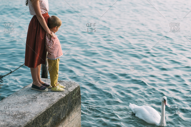Mother and son watching a swan