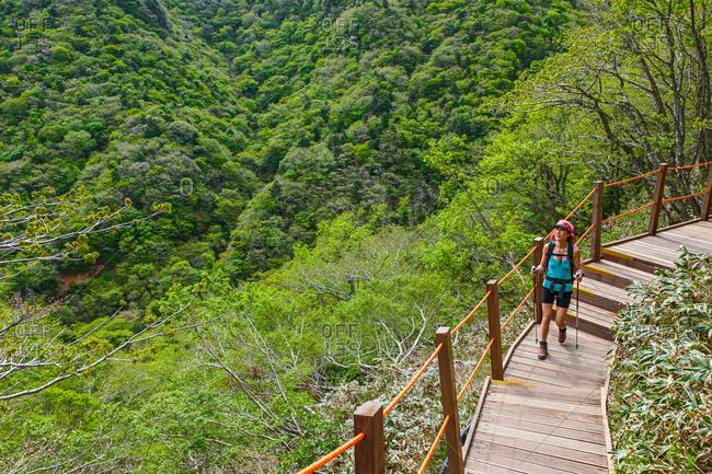 On a curve of the Gwaneumsa hiking trail to Hallasan on Jeju Island