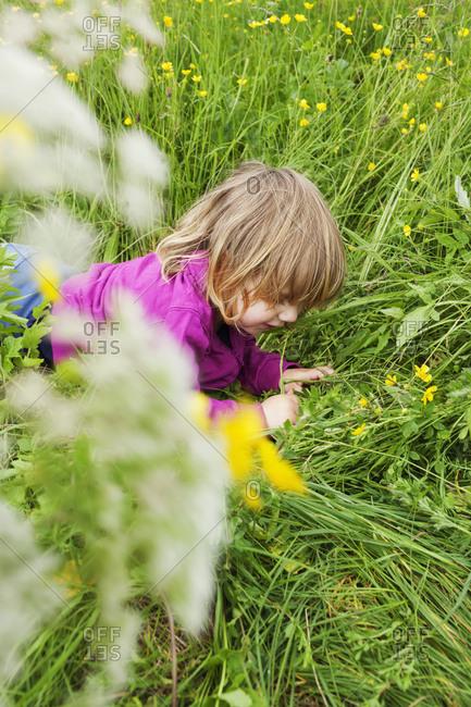 Little girl lying in the grass