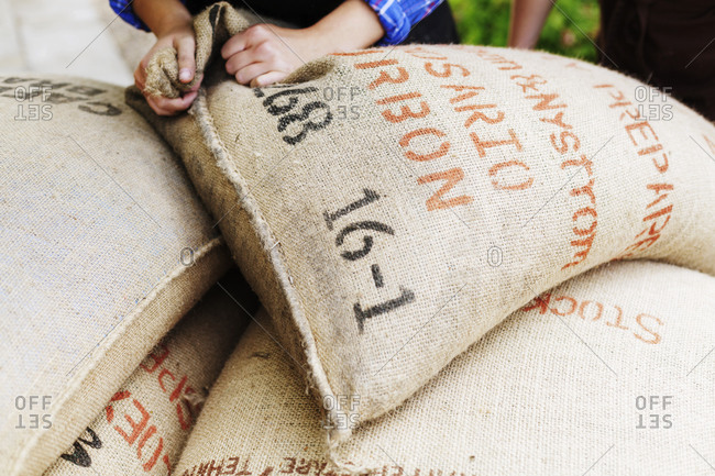 Person stacking burlap sacks full of coffee beans