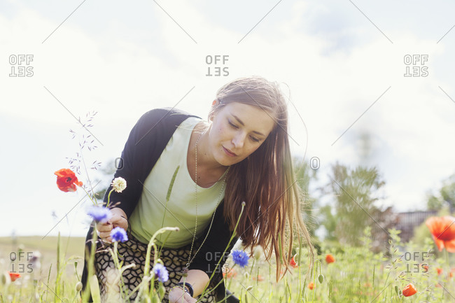 Woman picking red poppies and wild flowers