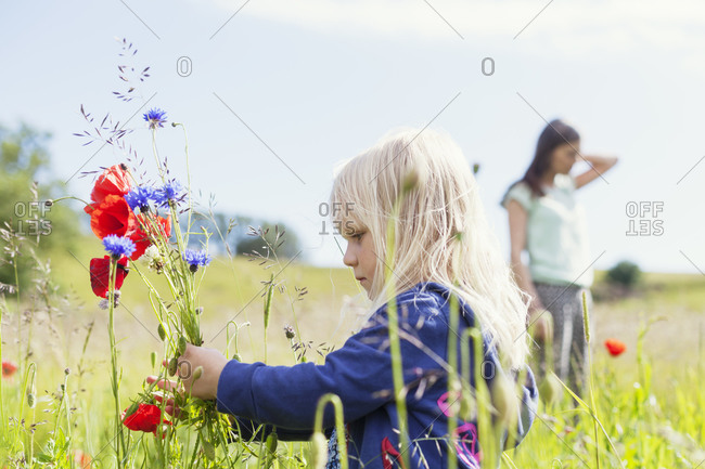 Little girl looking at bouquet of wild flowers