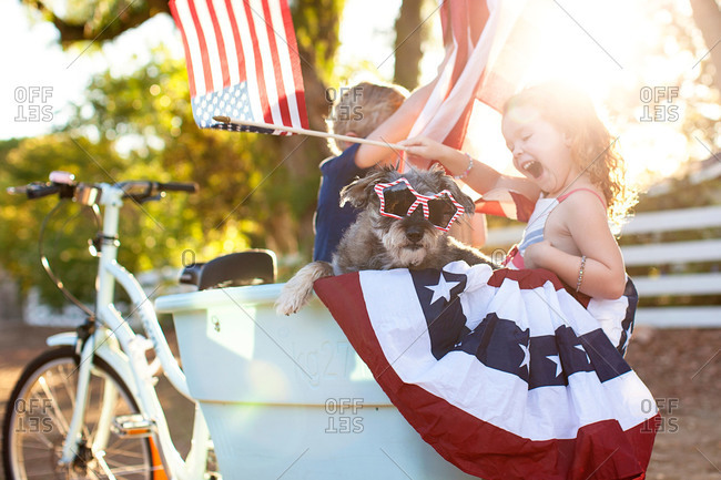 Boy and girl in basket of patriotic bike