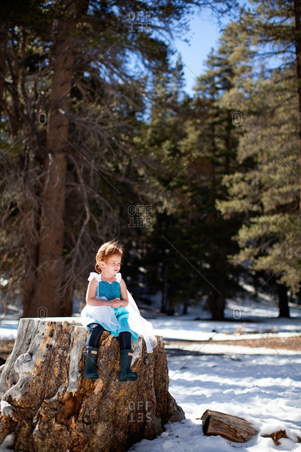 Girl in princess dress on stump in winter woods