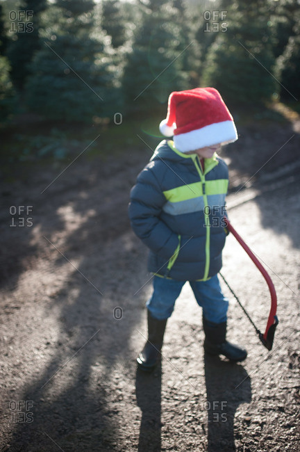 Boy in Santa hat with saw in tree farm