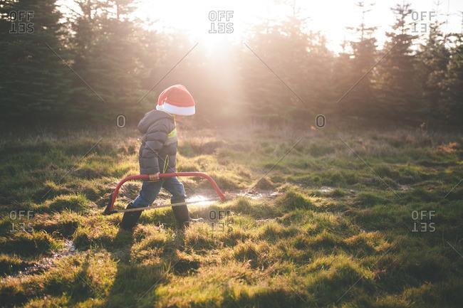 Boy walking in tree farm with saw