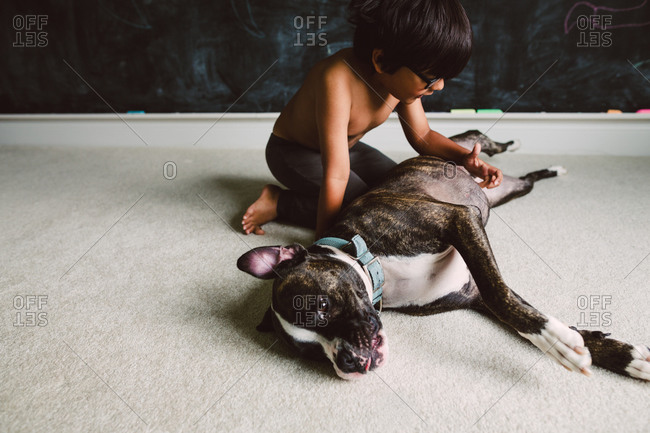 Little boy scratching his dog\'s belly