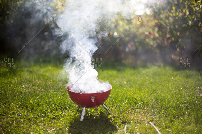 Smoking barbecue grill in garden