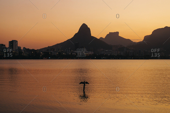 A silhouetted bird spreads its wings in front of the Two Brothers peaks in Rio de Janeiro