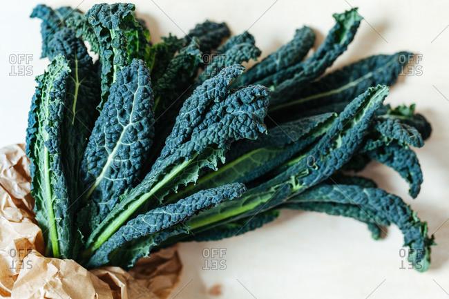 Leaves of fresh kale