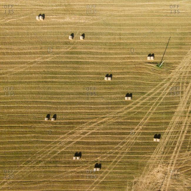 Farm fields in Vezaiciai, Lithuania