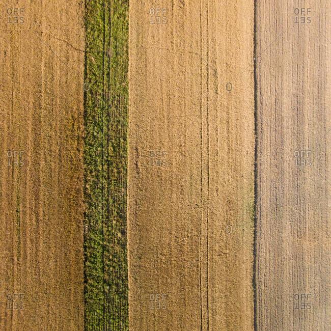 Fields in Paliepiai, Lithuania