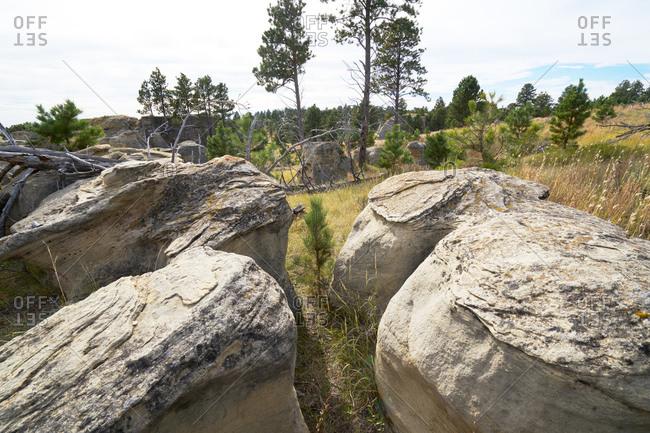 Eroded boulders in a field