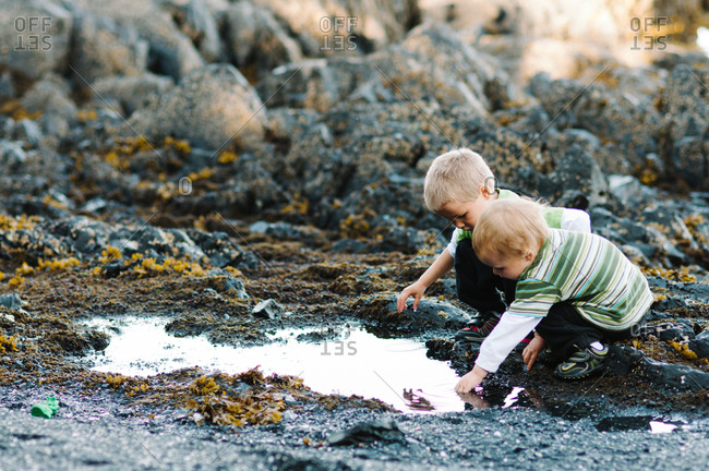 Two young boys exploring tidal pool on beach