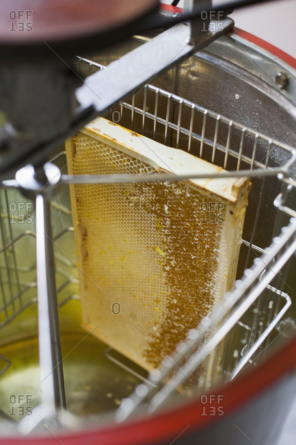 High angle view of honeycomb in machinery at industry