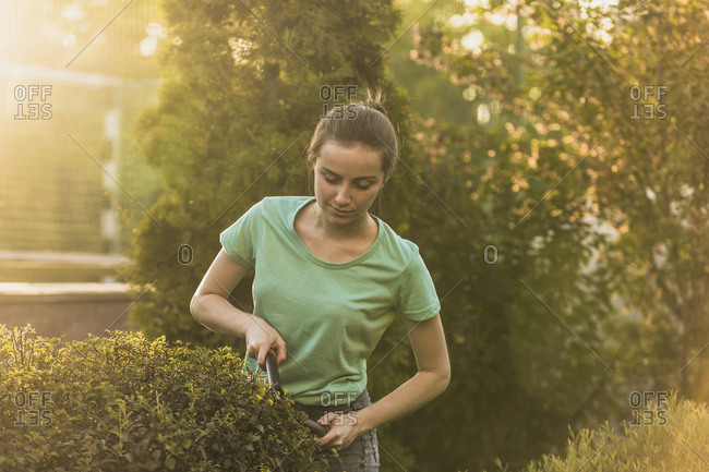 Woman cutting plants with pruning shears at yard