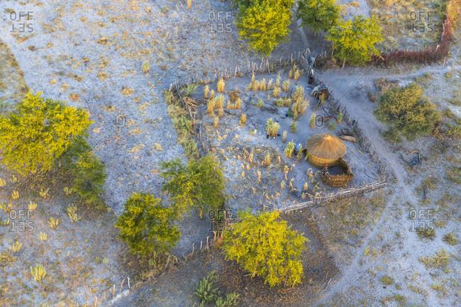 Hut and compound, Okavango Delta, Botswana