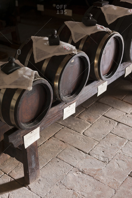 Barrels of wine in Italian winery