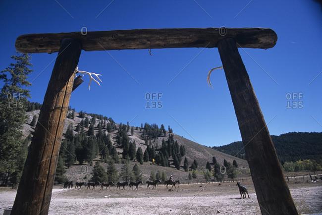 Horse ranch in the Smoky Mountains, Idaho