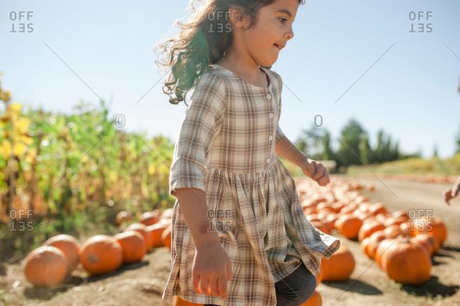 Little girl running through a pumpkin patch