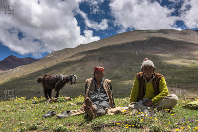 Kumzum Pass, Lahaul & Spiti, India - July 24, 2015: Goat herders sitting by goat in Himalayas