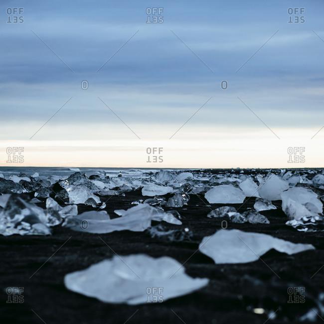 Ice chunks on a black beach in Iceland