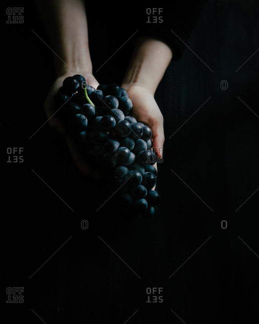 Hand holding cluster of grapes on black background