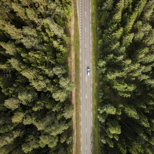 Aerial view of a road in the woods
