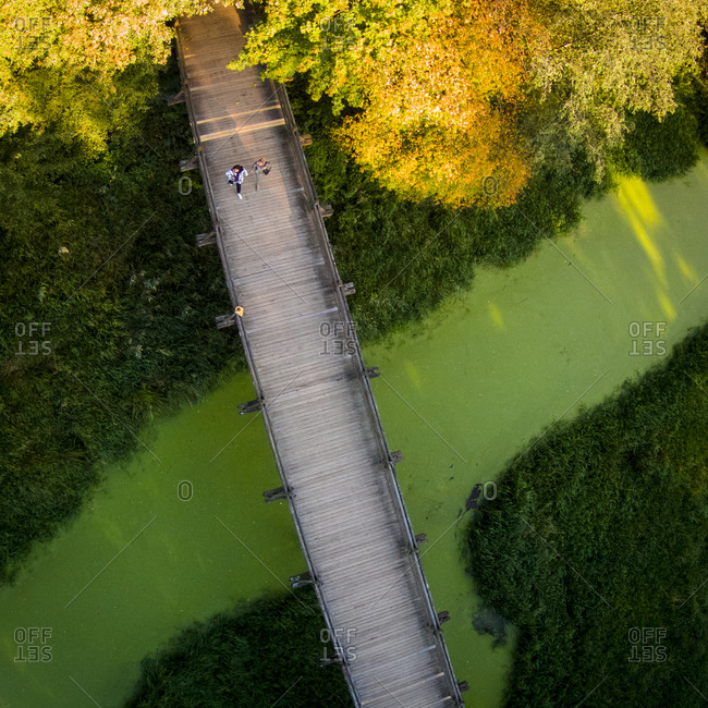 Aerial view of wooden bridge over green river in autumn in Lithuania