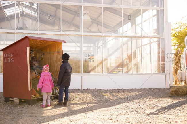 Children looking at a creepy skeleton display