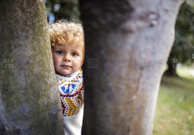 Portrait of blond little boy wearing patterned knit pullover looking between two tree trunks