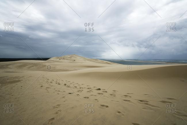 Tracks on Dune of Pilat