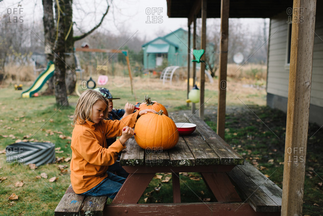 Boys carving pumpkins in their backyard