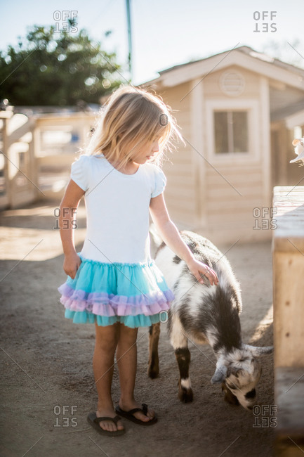 Little girl petting a goat