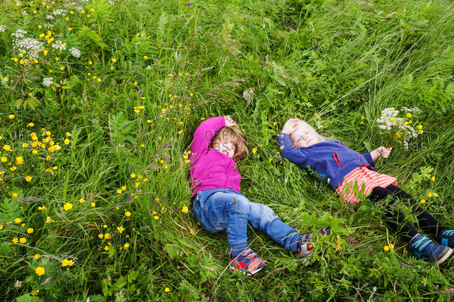Two toddler girls rolling in long grass