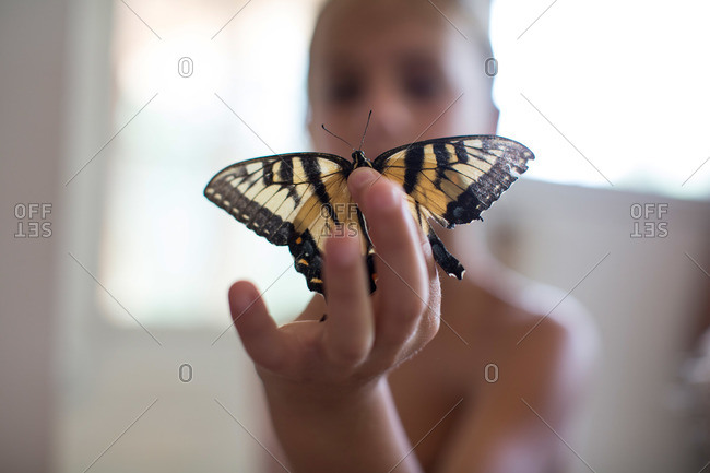 Boy holding up a moth