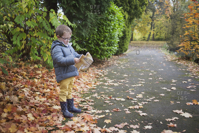 Little boy trying to read a park map