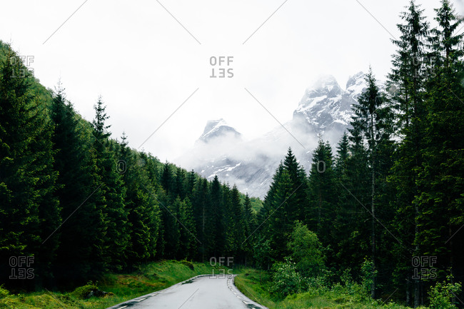 Road leading into Norwegian wilderness