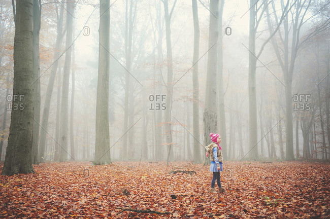 Girl in a misty fall woods