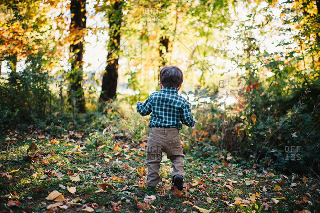 Rear view of toddler walking outside in the fall